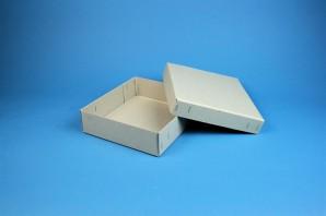 LIMA 50 long2 Cryo boîte (Conseil gris) / sans diviseur, gris, hauteur 53 mm