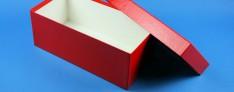 Bravo Kryo Pappe Boxen 133x257x100 mm hoch