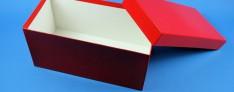 Bravo Kryo Pappe Boxen 133x257x130 mm hoch