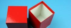 Delta Kryo Pappe Boxen 133x133x100 mm hoch