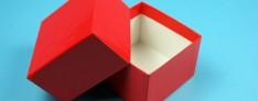 Delta Kryo Pappe Boxen 133x133x110 mm hoch