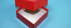 Delta Kryo Pappe Boxen 133x133x50 mm hoch