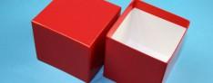 Delta Kryo Pappe Boxen 133x133x75 mm hoch
