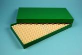 ALPHA 25 lang2 Kryobox (Karton spezial) 16x32 Fächer, grün, Höhe 25 mm