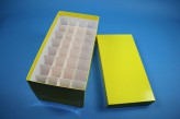 CellBox Maxi lang Kryobox (Karton standard) 4x8 Fächer, gelb, Höhe 128 mm